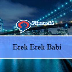 Erek Erek Babi