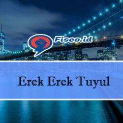 Erek Erek Tuyul